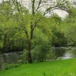 El-Río-Arnego-te-conduce-por-increíbles-espacios-verdes.